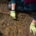 Jak genetyka łączy genealogię z archeologią?