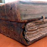 Acta perpetuitatis, czyli co można wyczytać z ksiąg wieczystych [genealog w archiwum]